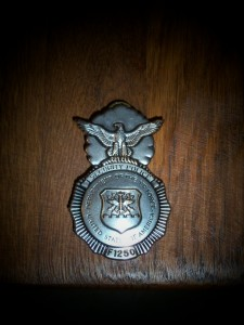 AIR FORCE BADGE.